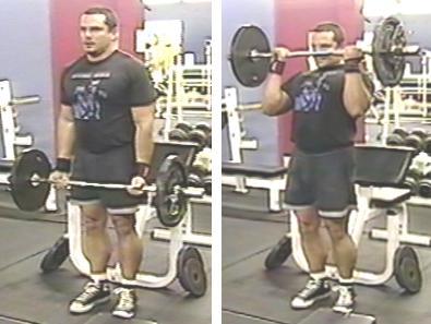 Biceps EZ Barbell Curl