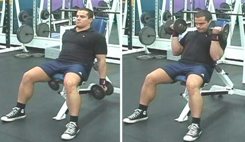 incline dumbell curls