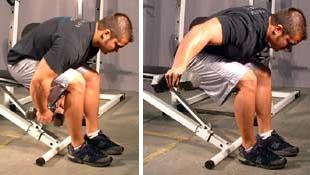 Seated Bent Over Dumbbell Lateral Raise