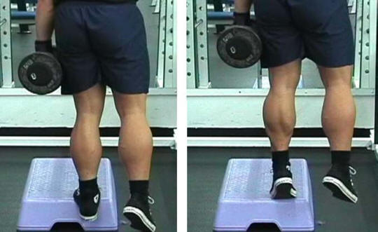 Dumbbell Calf Raise