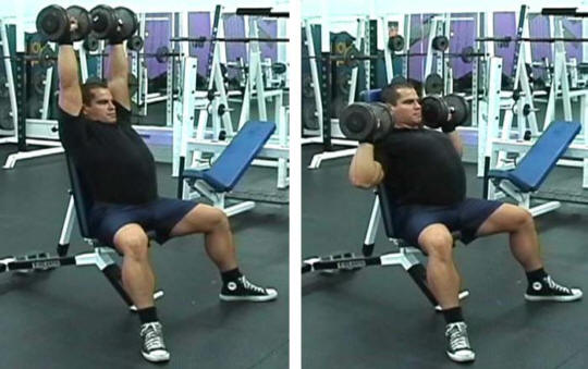 Seated Barbell Shoulder Press Form Seated Shoulder Press Barbell