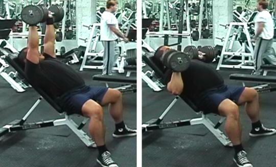 Basic Bodybuilding Workout