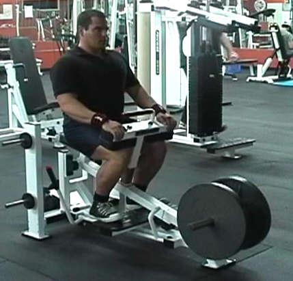 calves machine exercises
