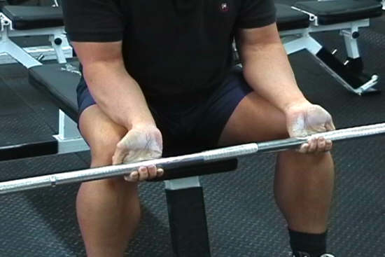 Barbell Wrist Curl Forearm Exercise Seated