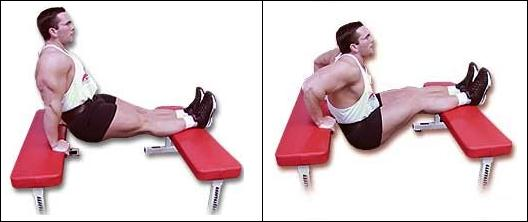 tricep dips, bench dips, dips between benches, bodyweight dips