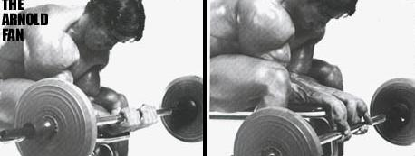 barbell wrist curls, dumbbell wrist curls