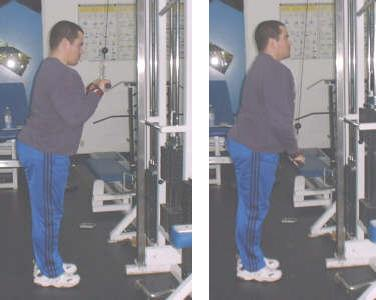 tricep pushdown picture