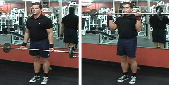 bicep curl picture