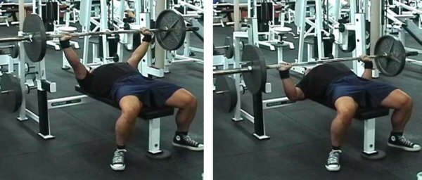 bench press picture