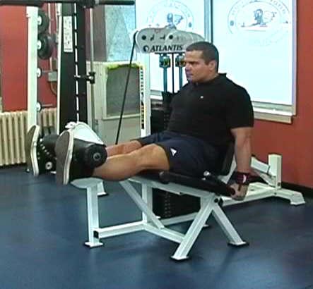 best leg workout  the top 5 leg exercises
