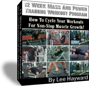12 week muscle building workout program